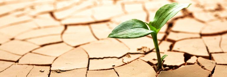راهبردهای بلند مدت توسعه آب و سند فرابخشی