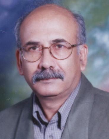 پروفسور امین علیزاده
