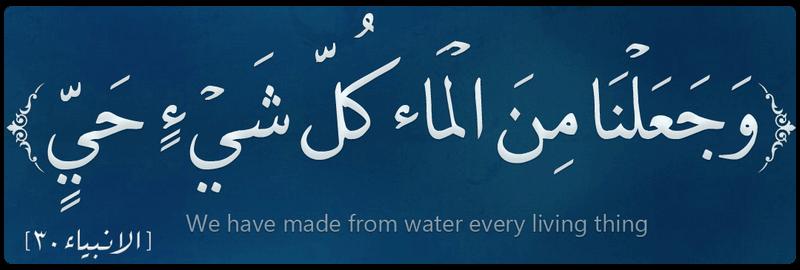 وجعلنا من الماء کل شیء حی