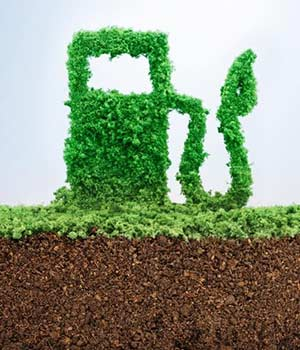 سوخت زیستی چیست؟