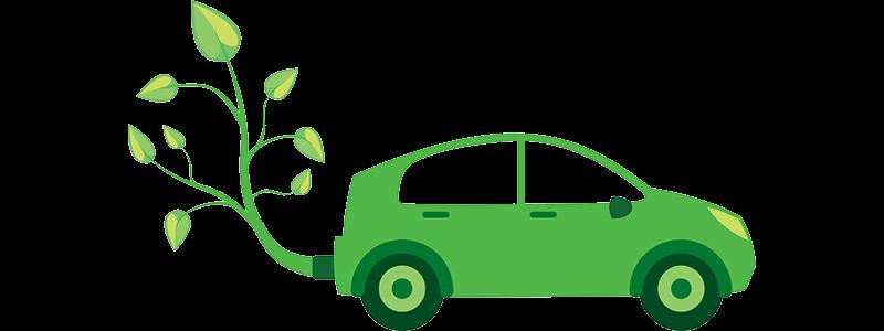 سوخت زیستی