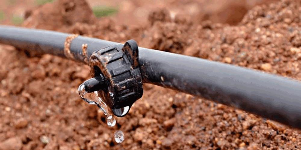 انتخاب قطره چکان در سیستم های آبیاری